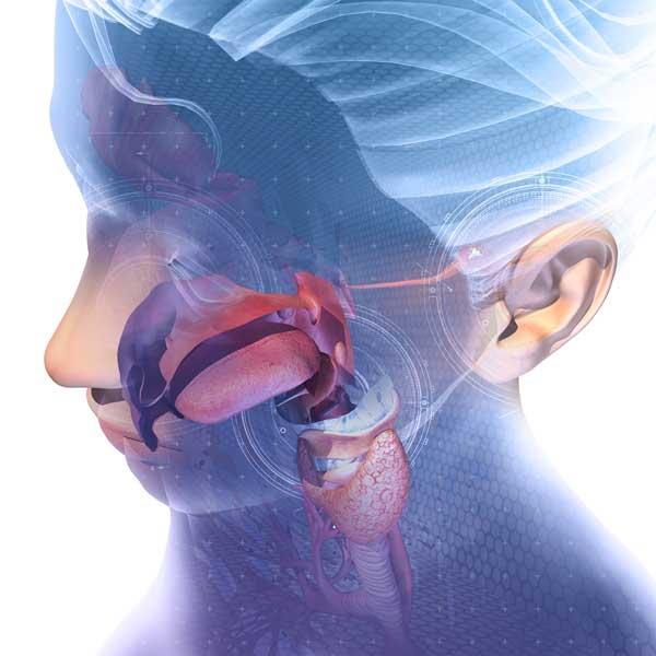 los nodulos linear unit el cuello duelen