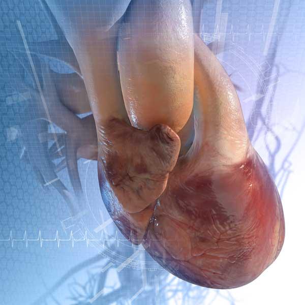 Mareos, presión arterial alta después de comer