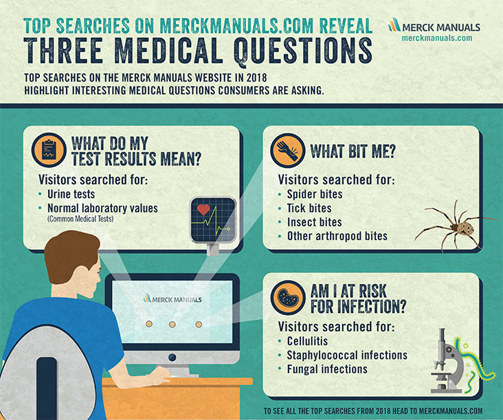 Spiders Bites Tops Merck Manuals Searches for the Second