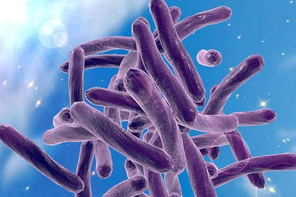 Identifying Drug-Resistant Tuberculosis—Commentary